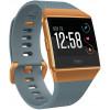 Смарт часы Fitbit Ionic Burnt Orange